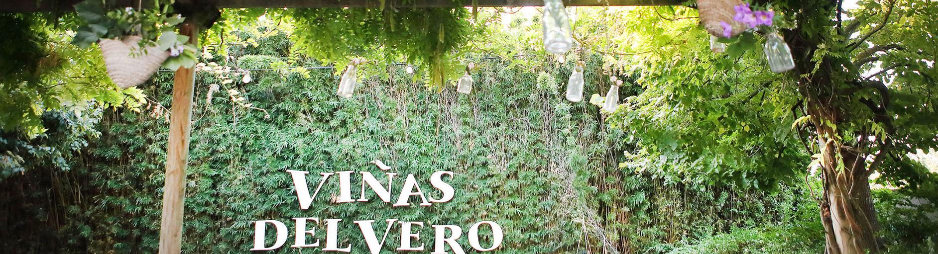Bodegas Viñas del Vero